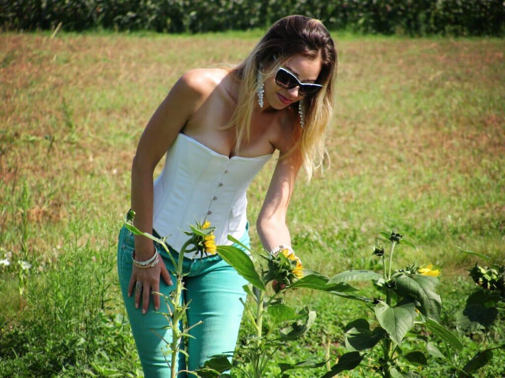 New England Farms